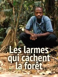 Les larmes qui cachent la forêt